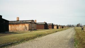 Huts at Birkenau